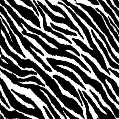 zebra texture #17