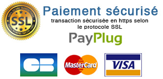 Transaction payplug paiement logo